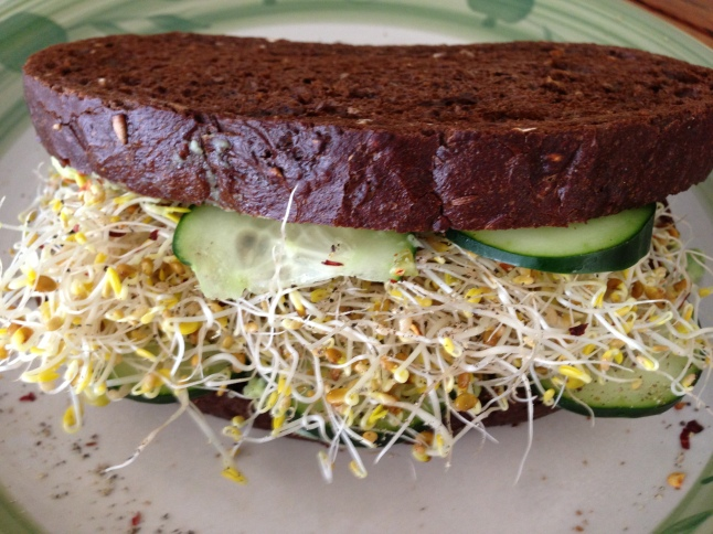 Sprouts, Guacamole, Cucumber on Pumpernickel