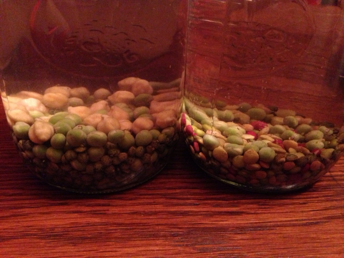Seeds Soaking