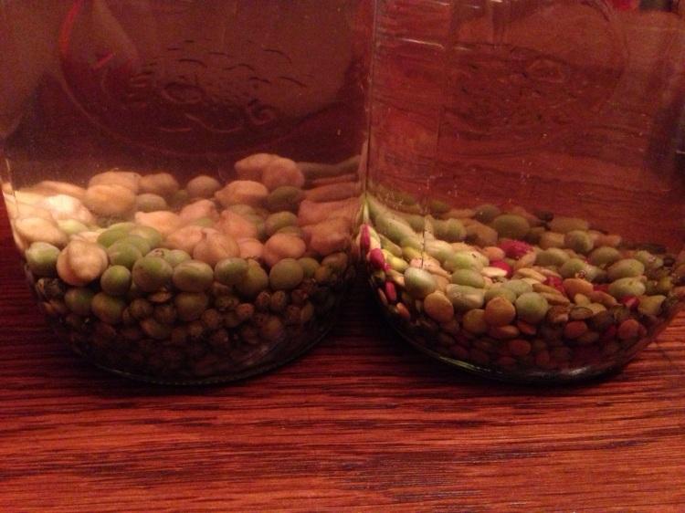 Seeds Soaking