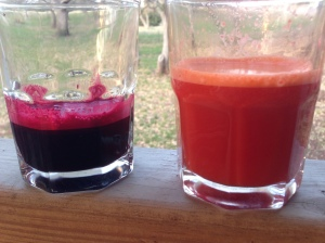 Beet Juice and Carrot Juice