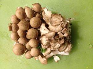 French Horn, Maitake, and Hon Shimejii Mushrooms