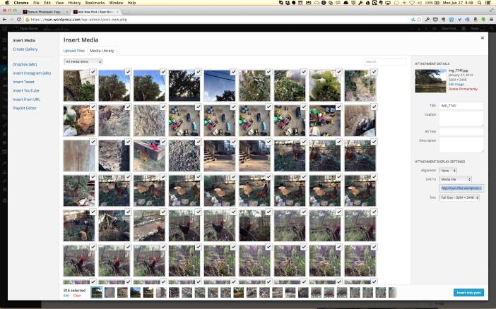 Screen Shot 2014-01-27 at 9.48.29 AM